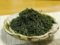 2012 saemidori from kirishima - leaves2