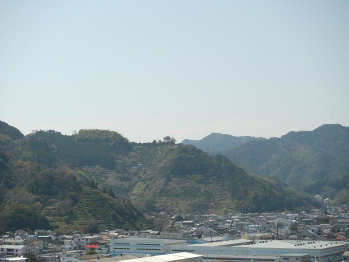 View of the mountain where Mr. Matsukawa's plantation is found (on the other side)